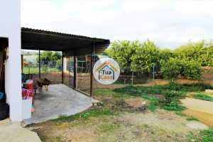Quinta em Pechão 2 Hectares - Ideal para Turismo Rural