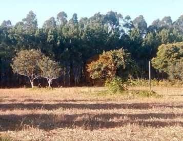 Terreno para Construção em Águeda